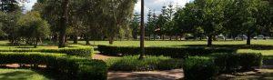 Cooks Hill Parkside Park